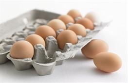 Экспорт яиц стабилизируется, а с ним и цены на внутреннем рынке