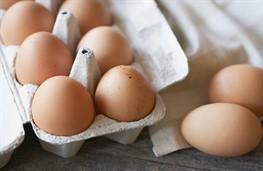 В мае экспорт яиц упал на 40%